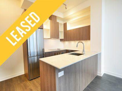 New 1 Bedroom Rental in Regent Park